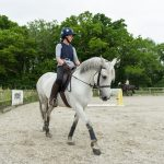 7114 - flatwork lesson image