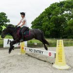 7275 - jumping lesson image