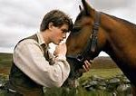 joey war horse film